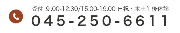 受付時間 9:00~12:30/15:00〜19:00 日祝・木土午後休診 045-250-6611